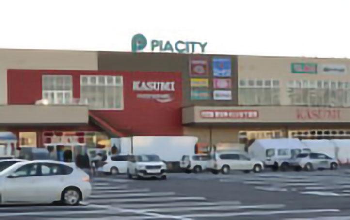 フードスクエア柏中新宿店(ピアシティ内)
